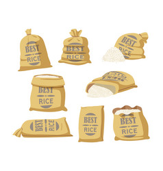 Cartoon set sacks with best rice typography vector