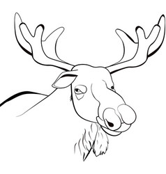 Moose or eurasian elk line vector