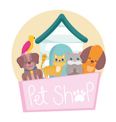 Pet shop with dog cat bird and hamster vector