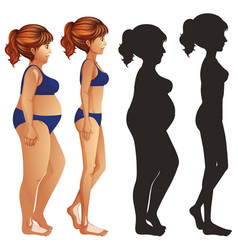 Skinny and fat women with sillhouette on white vector