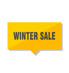 winter sale price tag vector image