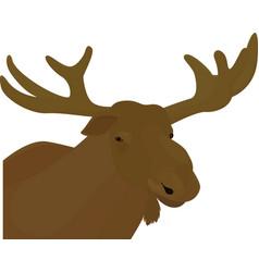 elk head brown color vector image