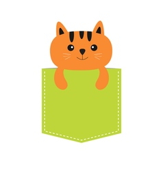 Cat in the pocket Cute cartoon character Orange vector image vector image