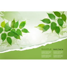 Nature background with green spring leaves and vector image vector image