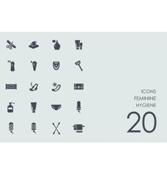 Set of feminine hygiene icons vector