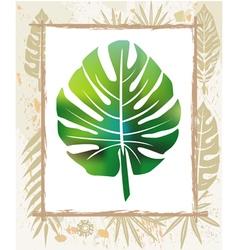 color leaf in a frame vector image