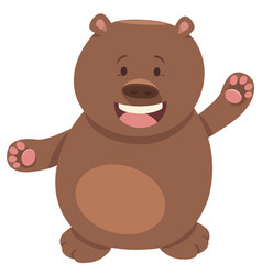 bear or teddy animal character vector image