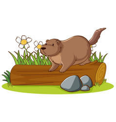 Isolated picture beaver on log vector
