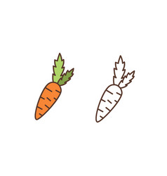 ripe carrot linear icon raw organic food vector image
