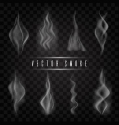 smoke collection vector image