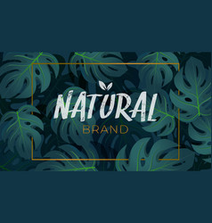 tropical foliage natural background template vector image