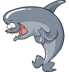 funny dolphin vector image