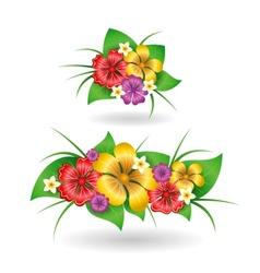 Tropical flowers decor elements vector image vector image