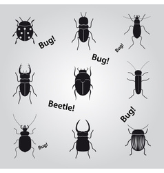 bugs and beetles icons set eps10 vector image vector image