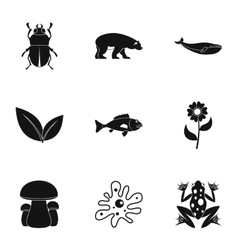 Beautiful nature icons set simple style vector