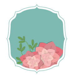 emblem frame with desert plants vector image