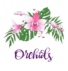 floral design frame orchid eucalyptus greenery vector image