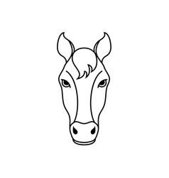 Horse head in line art style vector