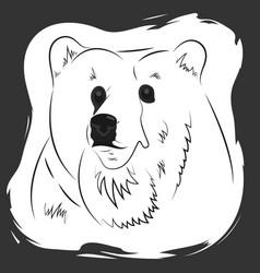 Portrait of a bear t-shirt singlet bag print vector