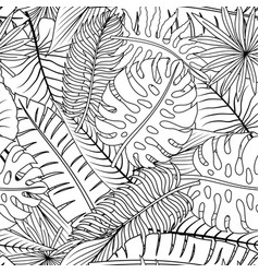 tropical leaves on a white background vector image