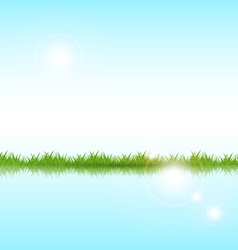 grass on a lake vector image vector image