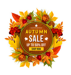 Autumn sale discount poster of leaf vector