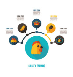chicken farming icon and agriculture infographics vector image