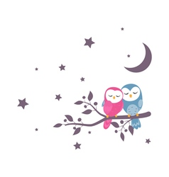 couples owls sitting on night scene vector image