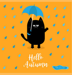 Hello autumn black cat holding blue umbrella rain vector