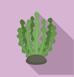 Marine bio plant icon flat style vector
