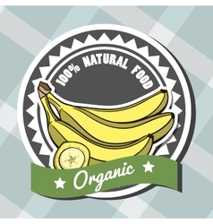 NaturalFood vector image