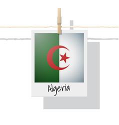 Photo of algeria flag vector