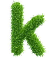 Small grass letter k on white background vector
