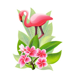 summer design for advertising with flamingo vector image