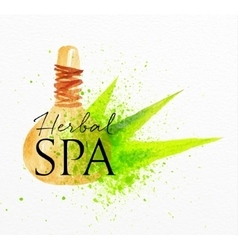 Beauty natural spa herbal vector image