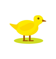 Cute duck isolated icon vector