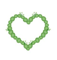 Fresh Asiatic Pennywort in Beautiful Heart Shape vector