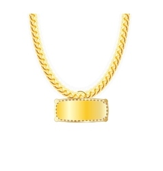 Gold chain jewelry whit pendants vector