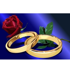 Two gold wedding rings with a red rose on the blue vector image