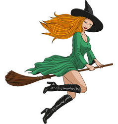 Witch on a broomstick in halloween vector