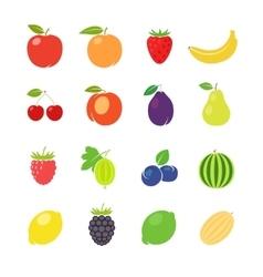 Fruits retro vector image vector image