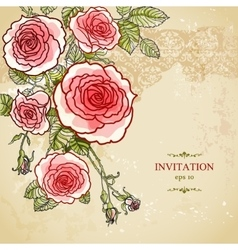 Floral invitation background vector image vector image