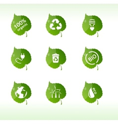 Eco labels isolated vector image