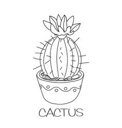 Cactus in flower pot vector