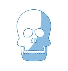 human skull anatomy health front image vector image