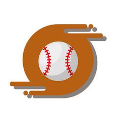 baseball ballsport recreation equipment vector image