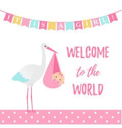 bashower girl card pink banner with stork vector image