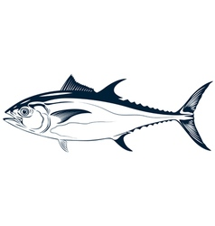 graphic tuna vector image