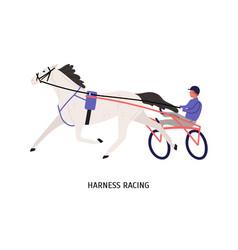 harness racing flat male vector image