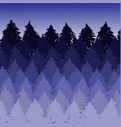 misty spruce forest landscape brush vector image